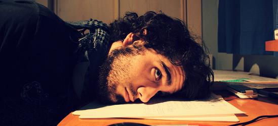Estudios generalistas