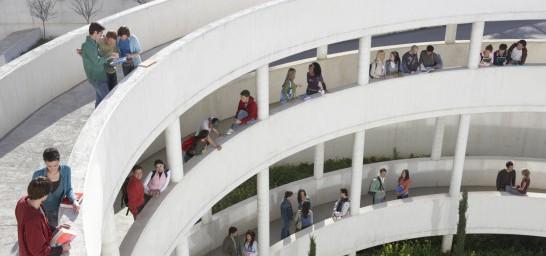 Las cifras de la universidad española