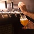 Si te interesa el mundo de la cerveza echa un vistazo a estas becas