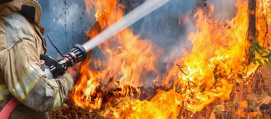 Profesiones incendios