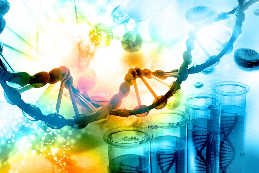 Herencia genética