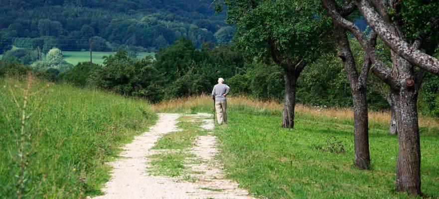 Pensión de viudedad: cuestiones básicas