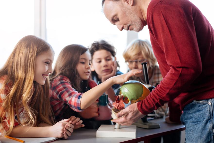 Empleo en educación: experto en metodologías educativas innovadoras