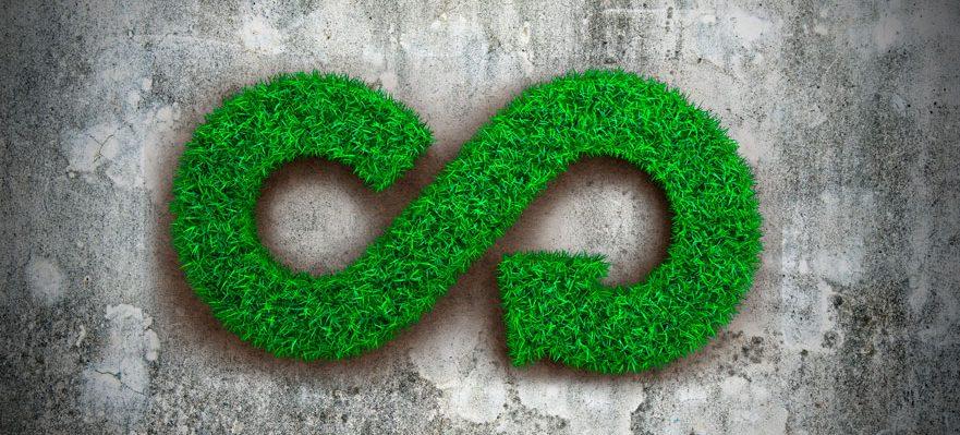 Empleo en Sostenibilidad y Medio Ambiente: Especialista en economía circular