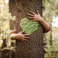 Experto en sostenibilidad ambiental, ¿qué futuro tiene esta profesión?